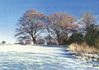 A watercolour painting of Box Hill, Surrey on a frosty winter morning by Margaret Heath.